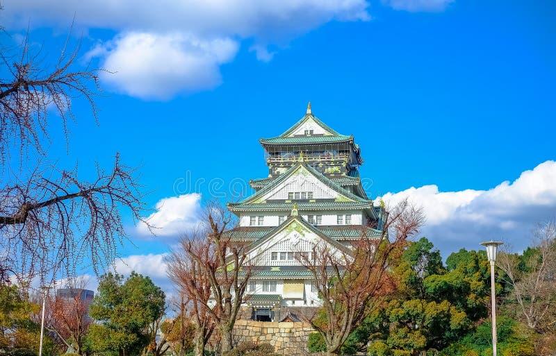 Osaka, Japón - 2 de marzo de 2018: El mume del Prunus florece en Osaka Castle Park en Osaka, Japón un punto turístico famoso Esta imagen de archivo libre de regalías