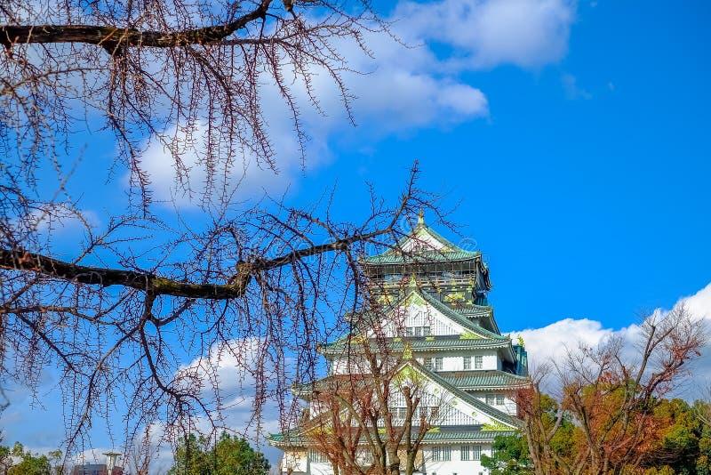 Osaka, Japan - breng 02 2018 in de war: Prunus mume komt in Osaka Castle Park in Osaka, Japan tot bloei een beroemde Toeristenvle royalty-vrije stock afbeeldingen