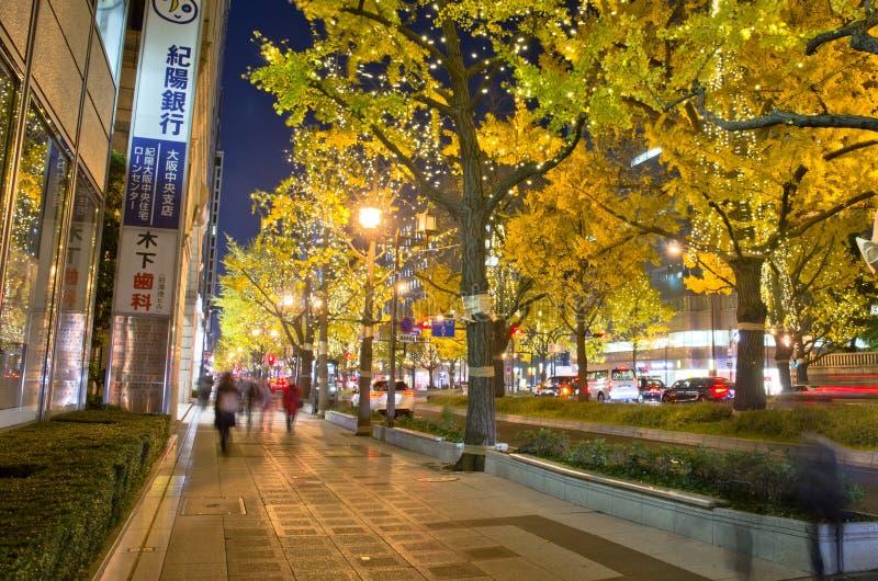 OSAKA, JAPAN - DECEMBER 9, 2015: gingko tree in Midosuji street of Osaka, Japan. OSAKA, JAPAN - DECEMBER 9, 2015: Festival of the lights in Midosuji street of stock images