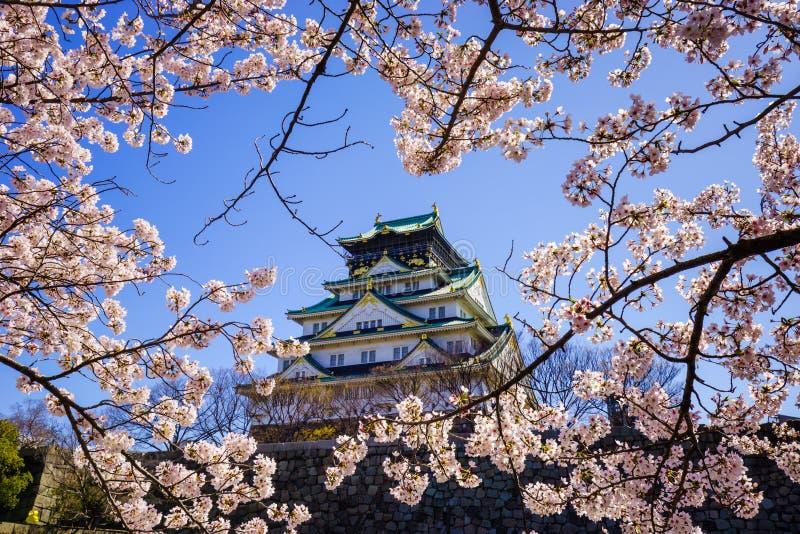Osaka kasztel, Osaka, Japan fotografia stock