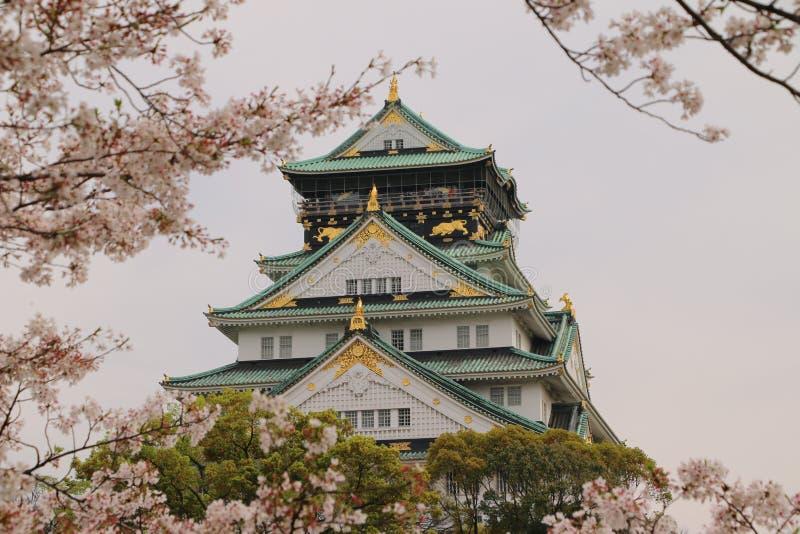 Osaka kasztel Sakura obrazy stock