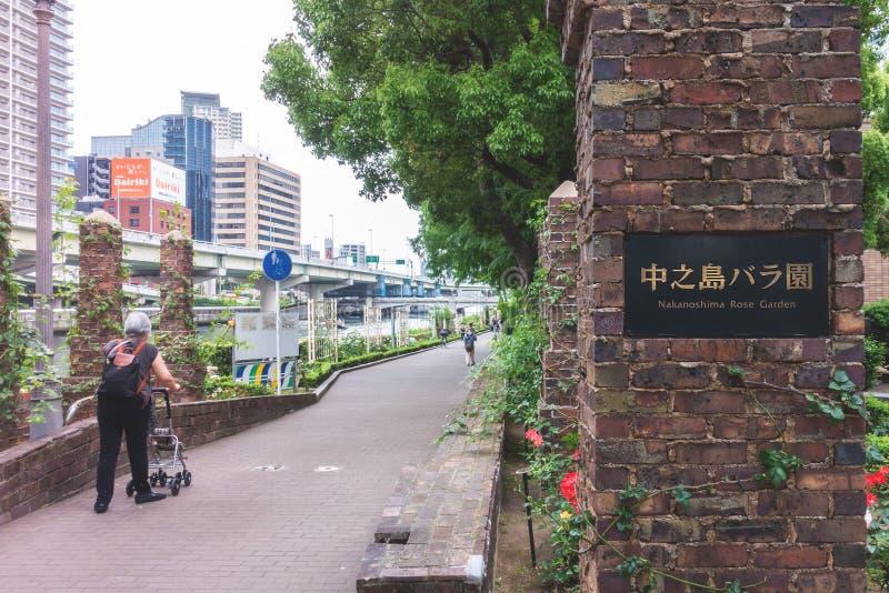 Osaka Nakanoshima Rose Garden perto do salão de Osaka City fotografia de stock royalty free