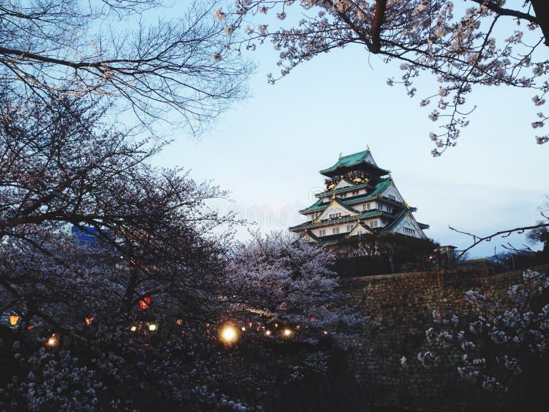 Download Osaka slott arkivfoto. Bild av natur, liggande, japan - 76701668