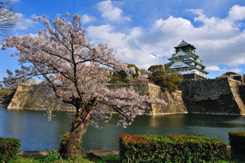 Osaka slott med de körsbärsröda blomningarna royaltyfria bilder