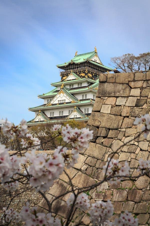 Osaka slott och körsbärsröd blomning, Osaka, Japan arkivbilder