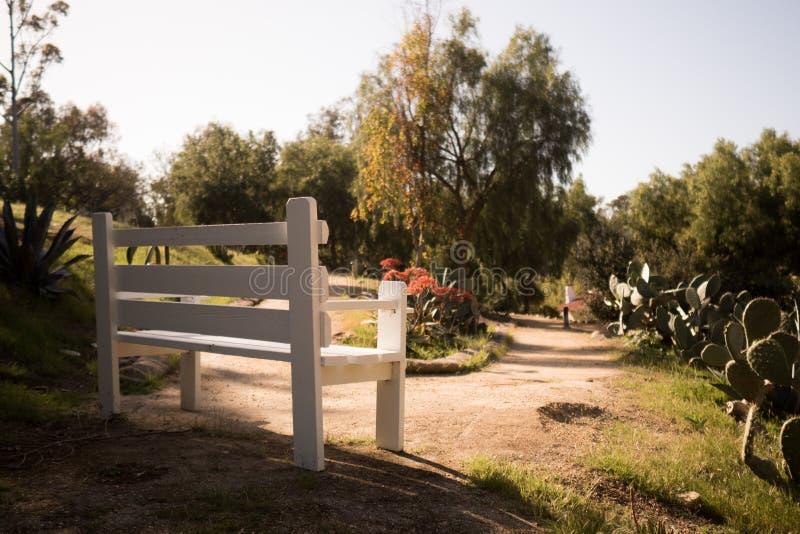 Osamotniona ławka przy parkiem fotografia stock