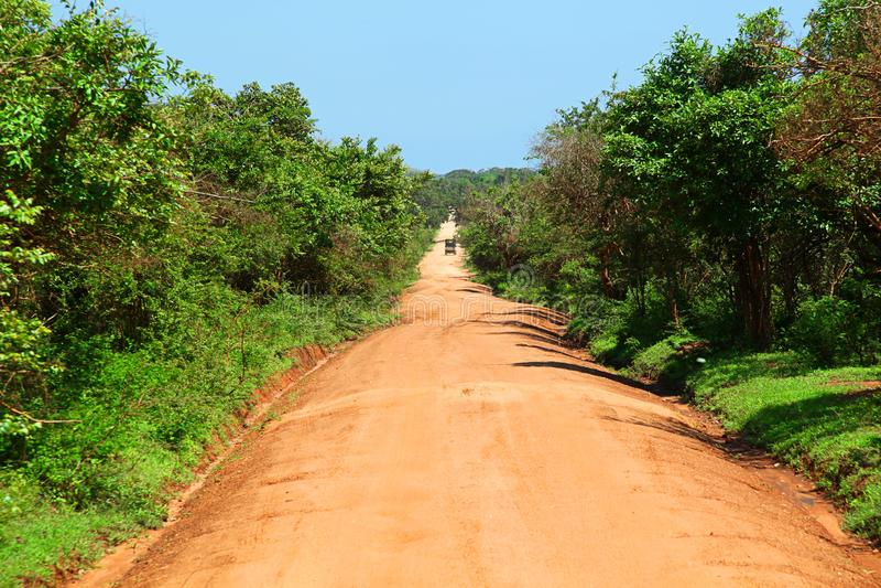 Osamotniona droga gruntowa przez dżungli w Yala parku narodowym zdjęcie royalty free