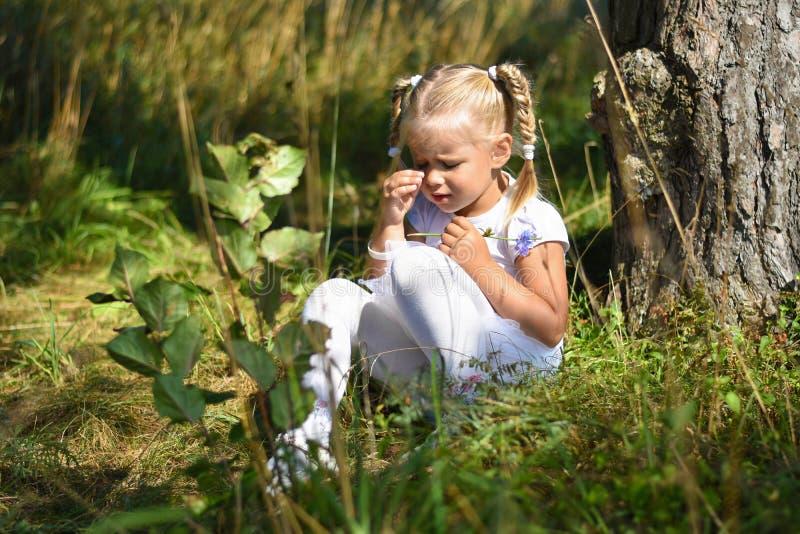 Osamotniona smutna mała dziewczynka w białej sukni i kwiacie w jej ręce gubił w drewnach siedzi blisko drzewa i płacze podczas dn zdjęcia royalty free
