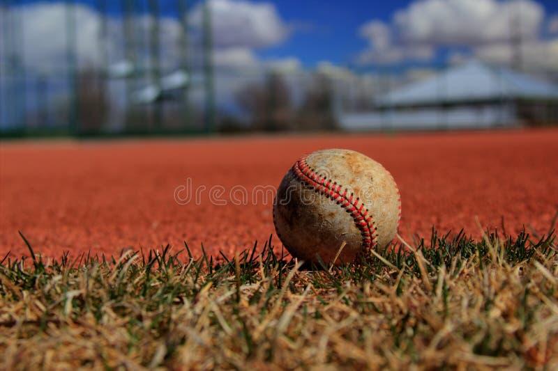 Osamotniony baseball zdjęcie royalty free
