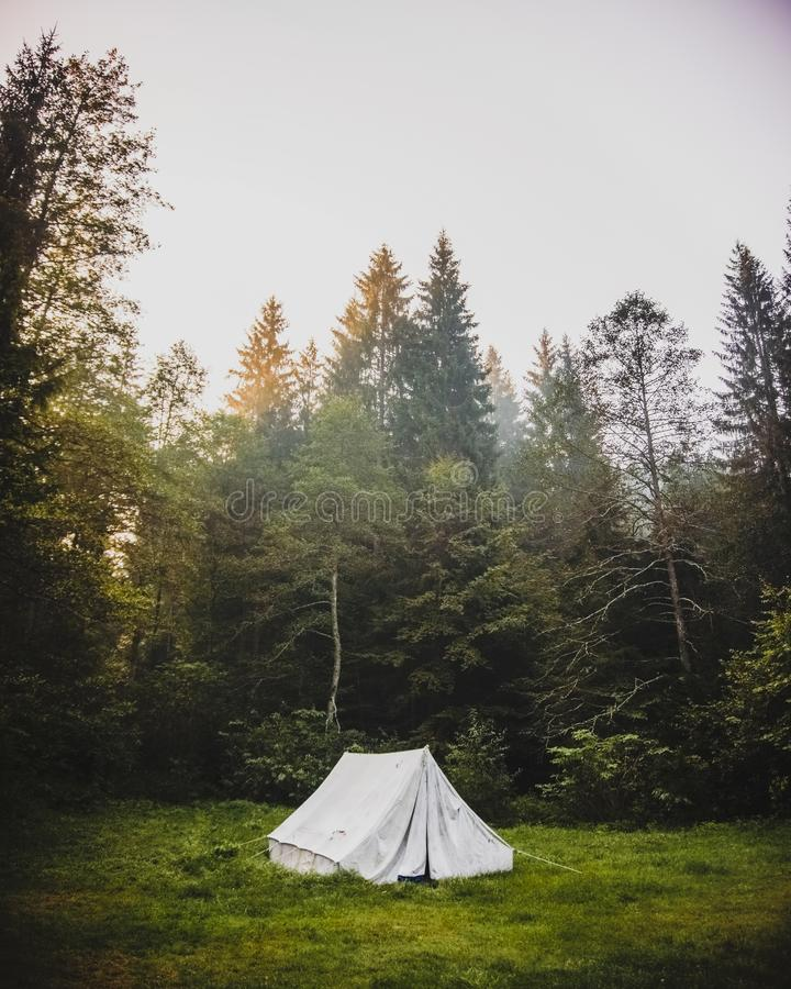 osamotniony namiot obrazy stock