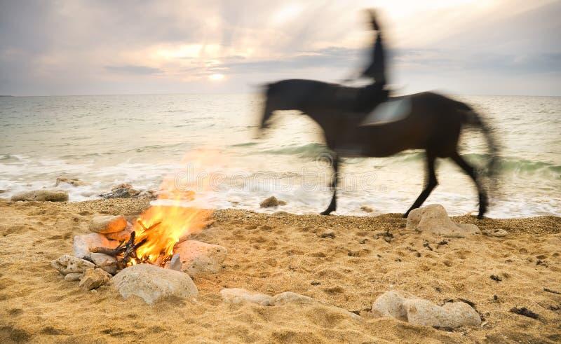 Osamotniony noc ogień na seacoast obraz royalty free