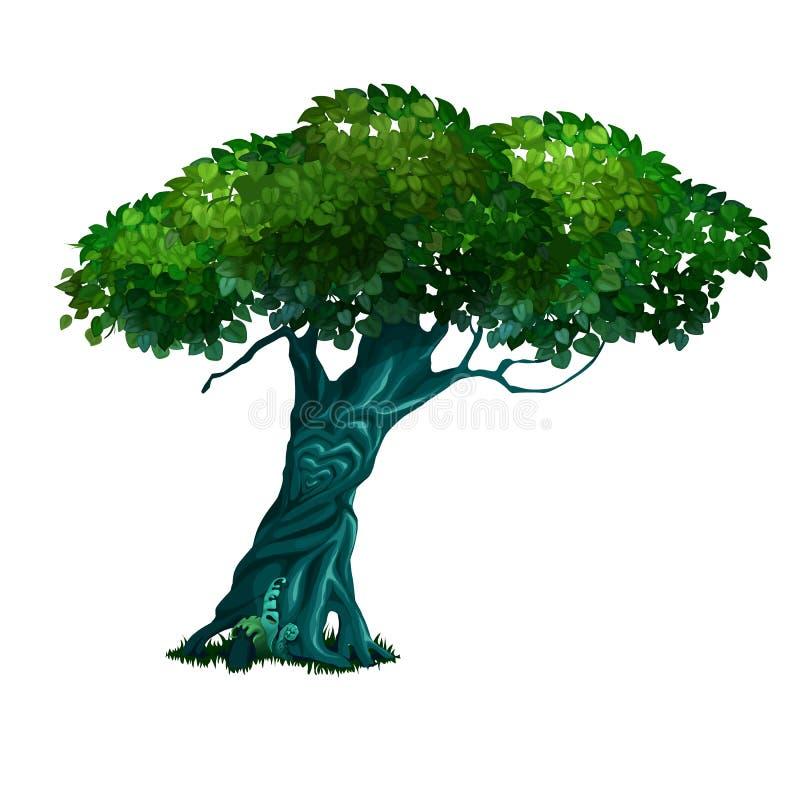 Osamotniony stary deciduous drzewo odizolowywający na białym tle Wektorowa kreskówki zakończenia ilustracja ilustracji