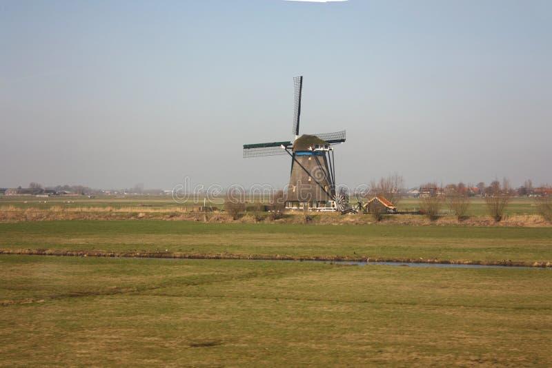 Osamotniony wiatraczek w małomiasteczkowej, czystej i zielonej wsi Holandia, niebo z trochę mgła i nieskazitelne zielone łąki fotografia stock