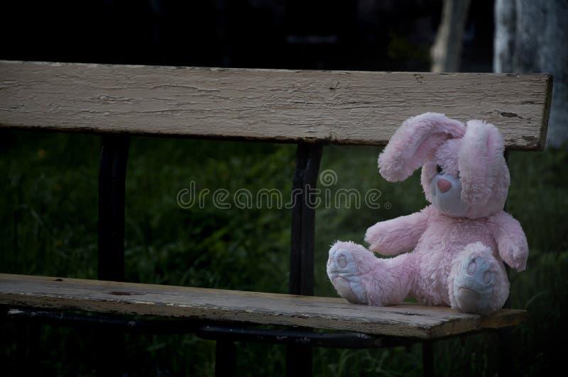 Osamotniony zapominający zaniechany miś pluszowy zabawki królika królik siedział na starym drewnianej ławki i czekać na właścicie fotografia royalty free
