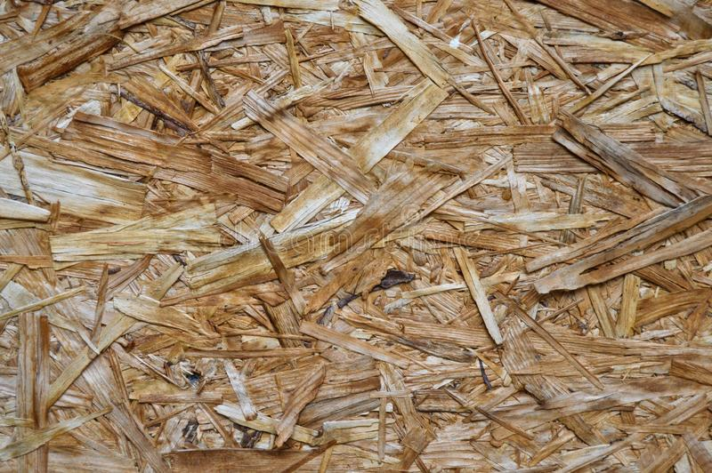 OSB plate consisting of pressed pine tree chips. Background can be stock photography