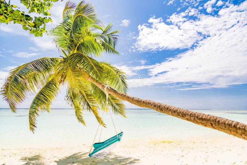 Oscilación de lujo del concepto, de la palma y de la playa de las vacaciones sobre el mar azul hermoso Paisaje tropical para las  foto de archivo