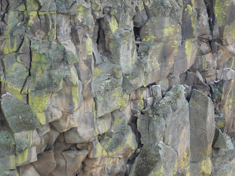 Oscile la pared de una garganta profunda del barranco de 300 pies fotos de archivo
