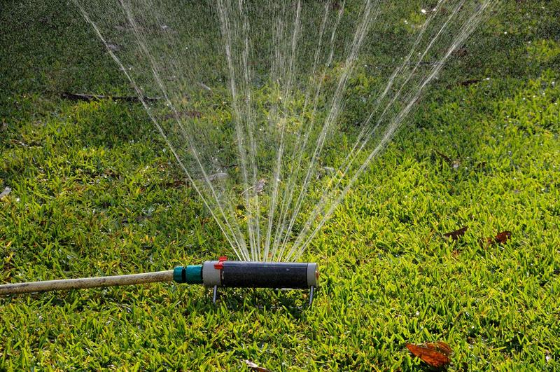 Oscillating Garden Sprinkler Stock Image Image 30717513