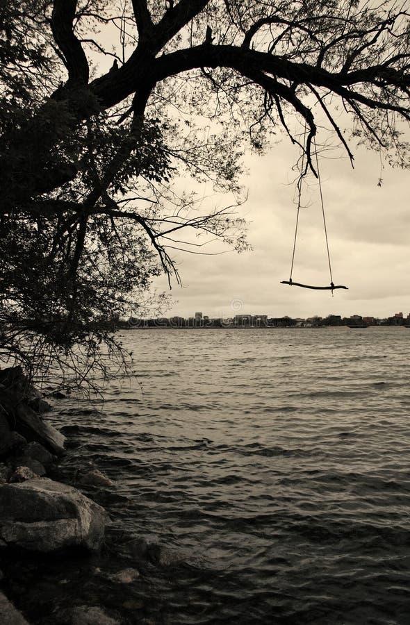 Oscillation au-dessus du lac photo libre de droits