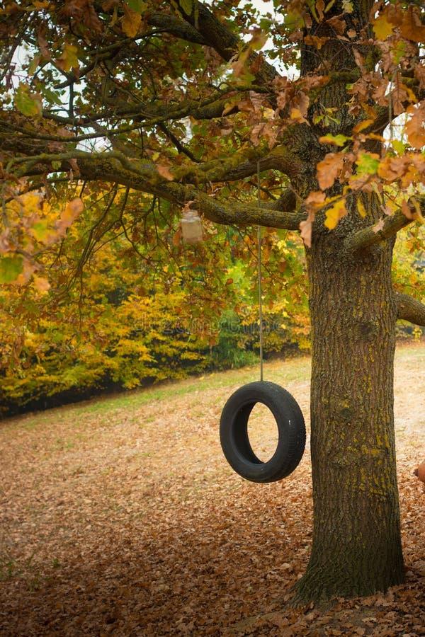 Oscillation de pneu dans le paysage automnal photographie stock