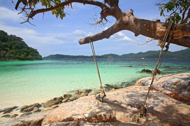 Oscillation en bois s'arrêtant sur l'arbre à la plage tropicale photos libres de droits