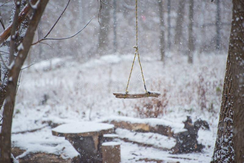 Oscillation en parc à l'hiver photos stock