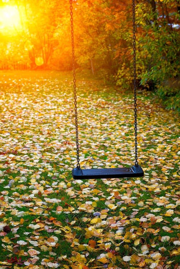 Oscillazione in autunno immagine stock libera da diritti