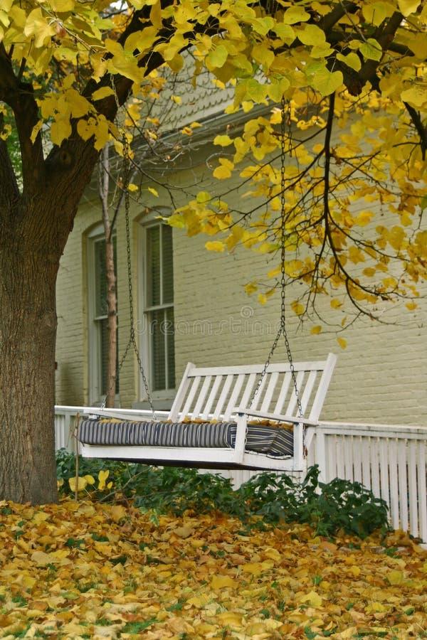 Download Oscillazione di autunno immagine stock. Immagine di yellow - 7314435