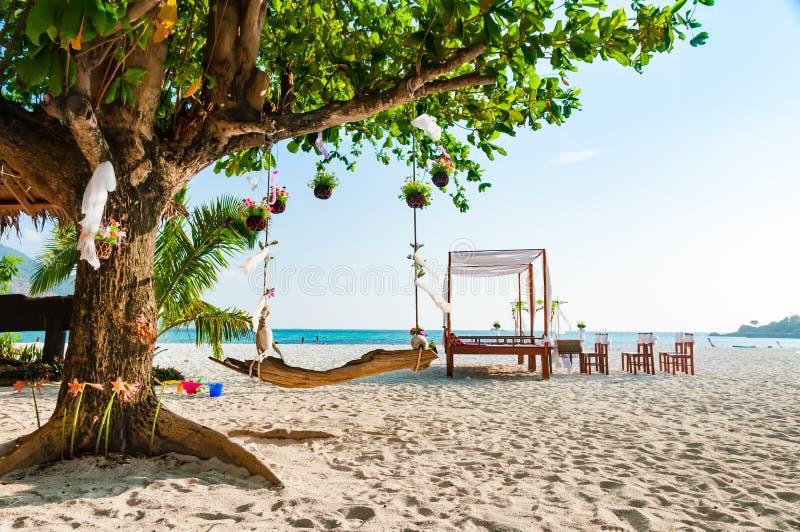 Oscilli appendendo sotto i grandi alberi per la decorazione di cerimonia di nozze fotografia stock libera da diritti