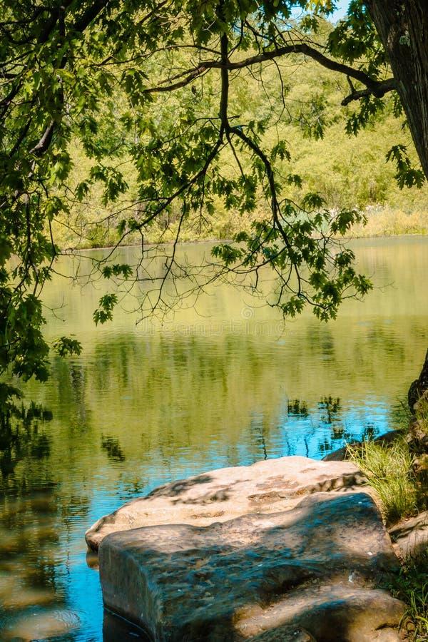 Oscilli la pertica dal lago incorniciato dai rami di albero al parco attillato blu in Pensilvania fotografia stock