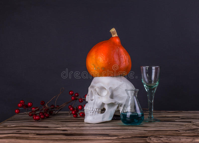 Oscuramente natura morta con i wi delle provette del cranio, della zucca, della sorba e fotografia stock