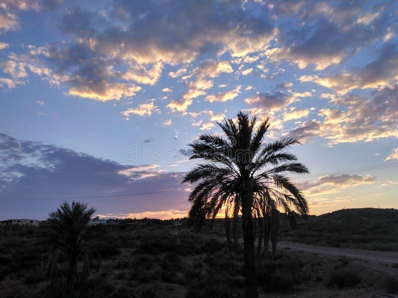 Oscuridad al amanecer foto de archivo libre de regalías