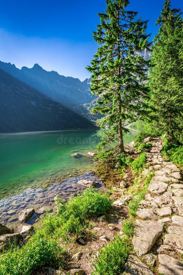 Oscuridad imponente en la charca en las montañas de Tatra en verano imagen de archivo