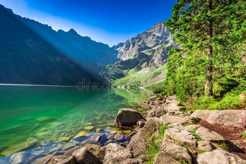 Oscuridad maravillosa en la charca en las montañas de Tatra foto de archivo
