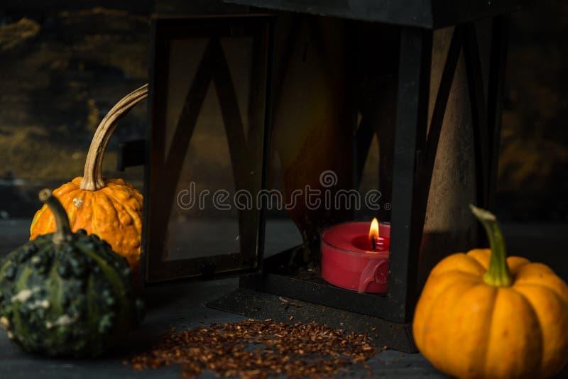 Oscuro, tranquilo, Halloween, fondo de la acción de gracias foto de archivo