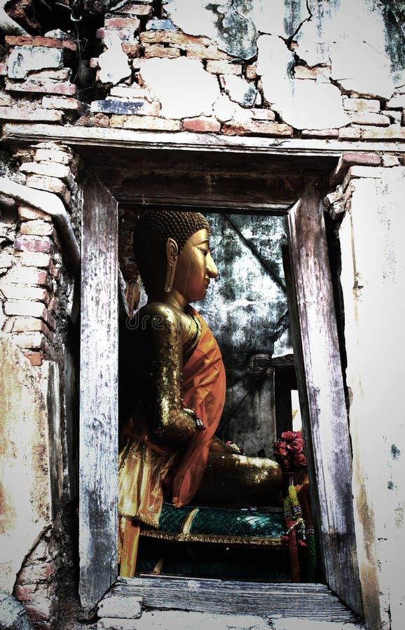 Osedda Thailand, fördärvar av den gamla templet med ett Bodhi träd rotar fotografering för bildbyråer