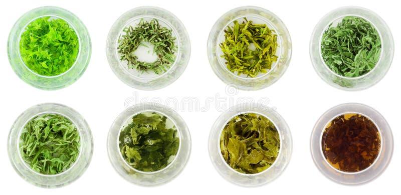 osiem misek zielonej herbaty obrazy stock