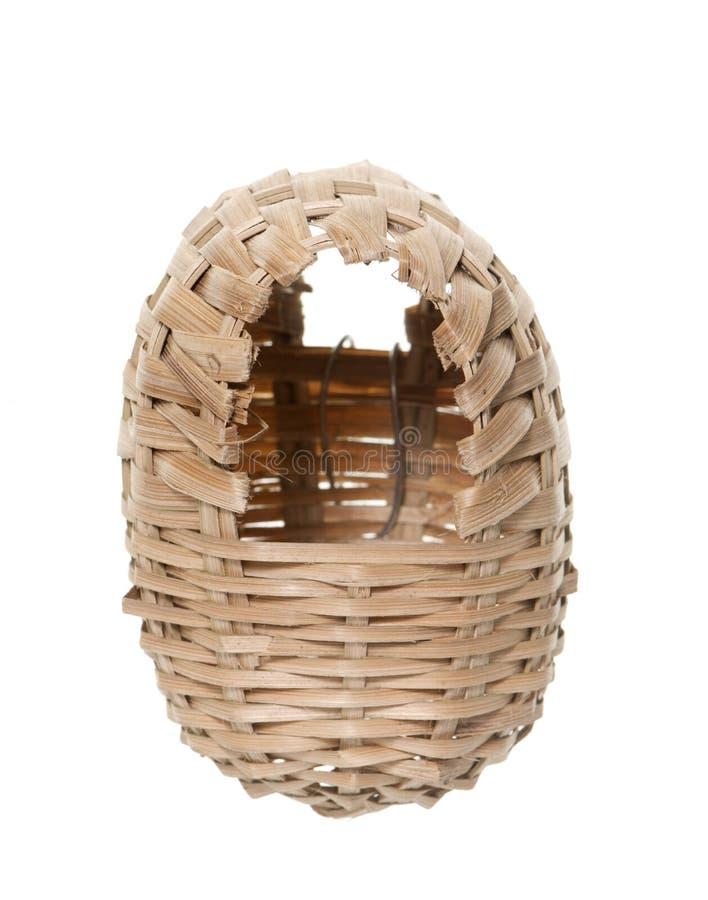 Osier nest bird royalty free stock photos
