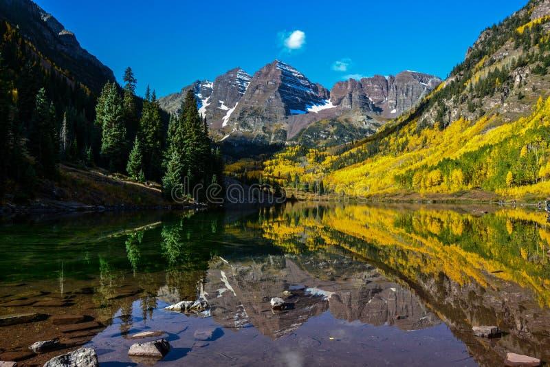 osikowy dzwonów Colorado maroon zdjęcie royalty free