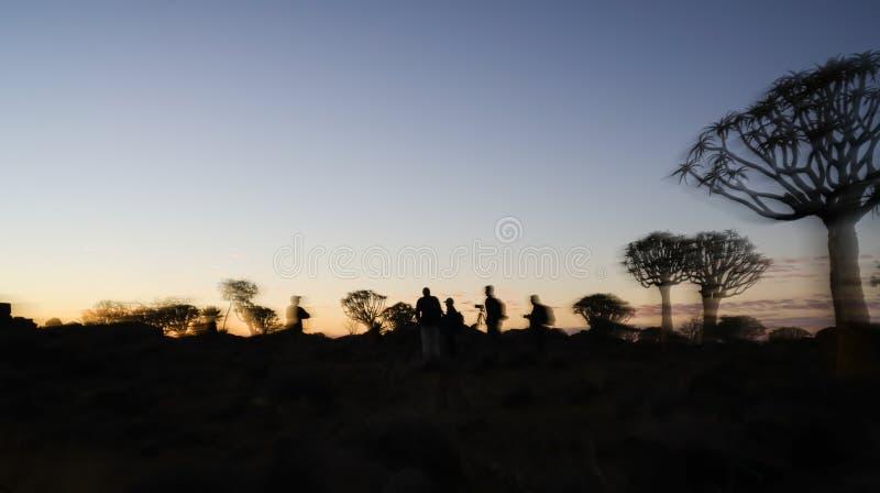 Oskarpa effekter av gruppfotografer silhouetted bland träd royaltyfri bild