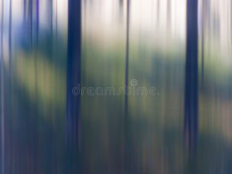 Oskarpa träd i trän arkivfoto