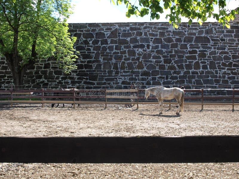 Oslo noorwegen stock afbeelding