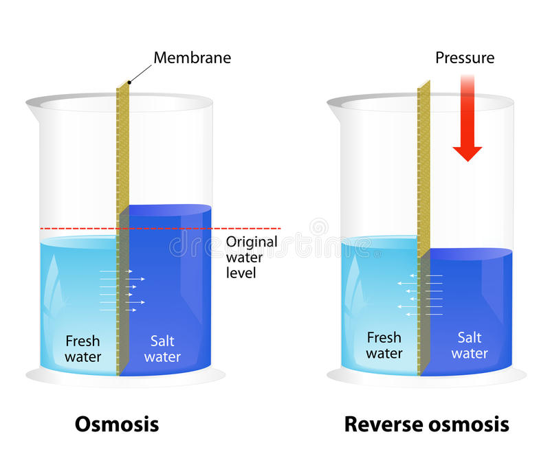 Osmosis and Reverse Osmosis stock illustration
