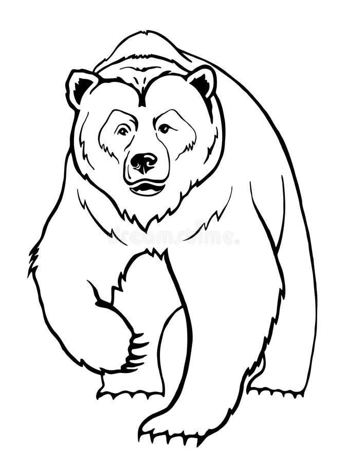 Oso stock de ilustración