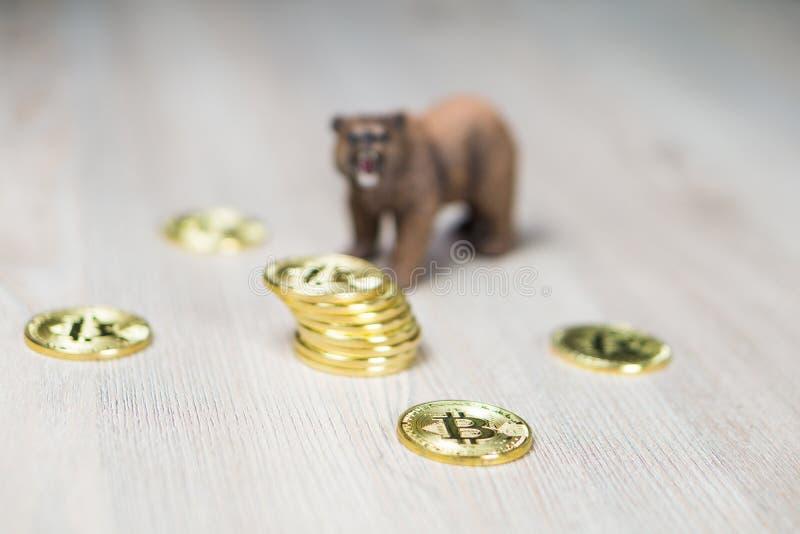 Oso con el foco de Bitcoin Cryptocurrency del oro en monedas Concepto financiero de Wall Street del mercado bajista foto de archivo
