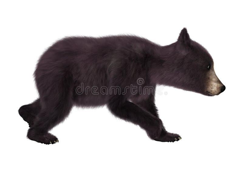 Oso Cub negro stock de ilustración