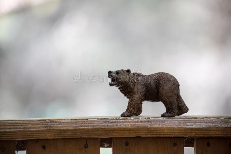Oso de Brown que camina en mini figura del oso del bosque (u oso del juguete) en el parque imagenes de archivo