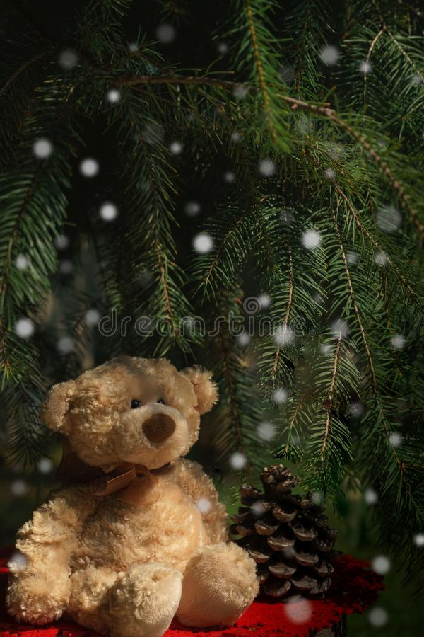 Oso de peluche lindo que se sienta en tocón con la cubierta roja bajo ramas verdes del árbol de abeto y que mira en una nieve agr imagen de archivo libre de regalías