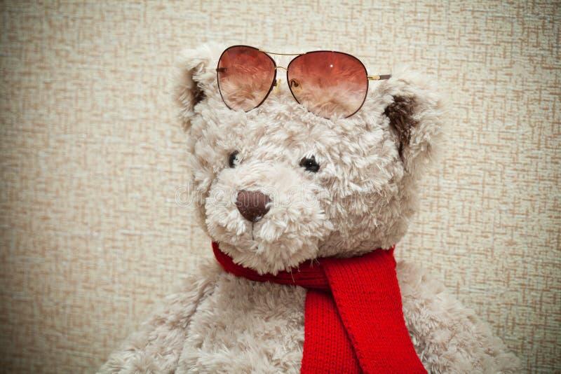Oso de peluche que lleva una bufanda y las gafas de sol fotos de archivo