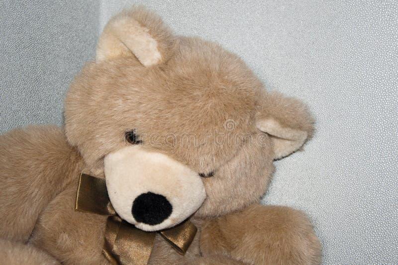 Oso del juguete de Browm fotografía de archivo libre de regalías